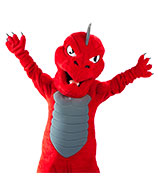 SUNY Oneonta Dragon - Fire